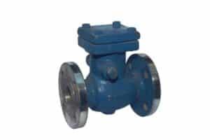 non return valve manufacturer, supplier in delhi, lucknow, uttarpradesh